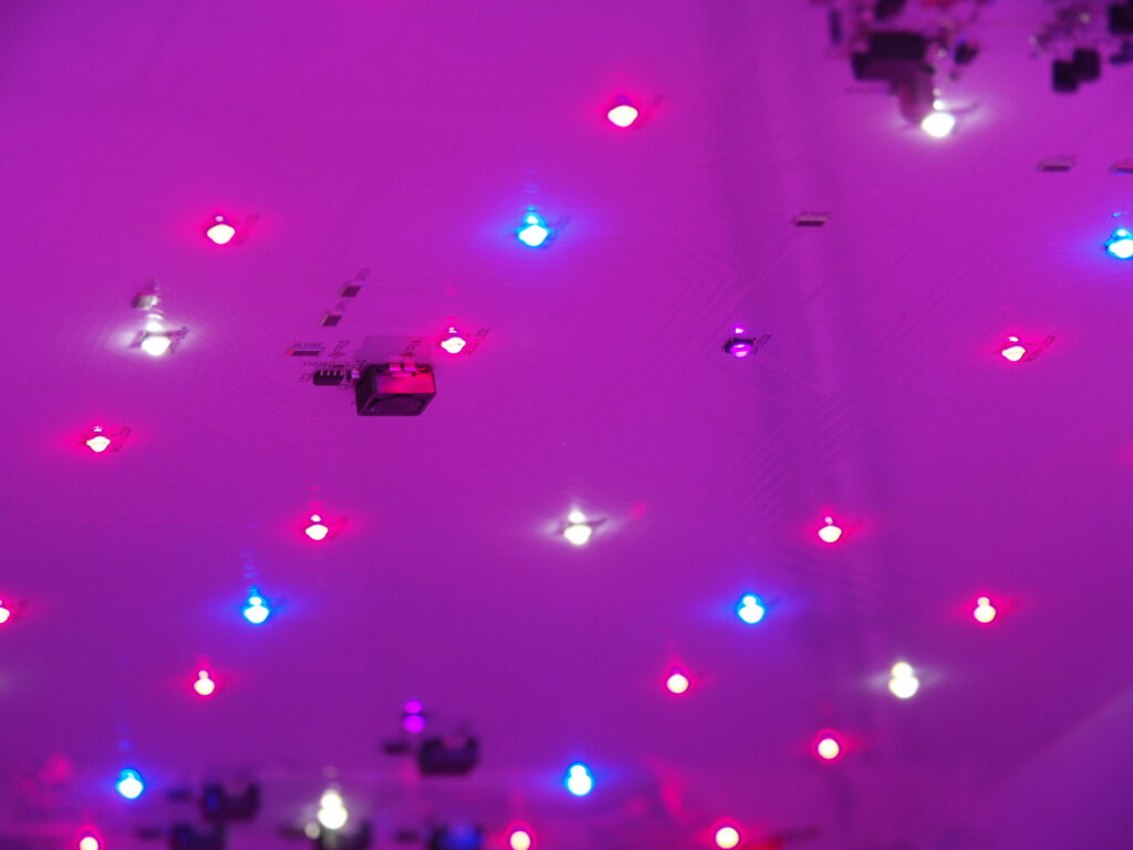 Multiple small LED lights on the red, blue, and normal light spectrums used in vertical farming.