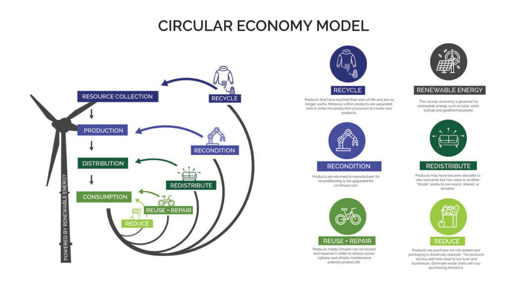 Infographic shows the circular economy model and how all resources get repurposed in a system